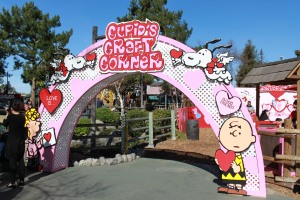 Knotts Valentines Farm